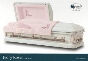 Choice Ivory Rose AS scaled